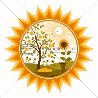 apple tree and sunflowers in sun