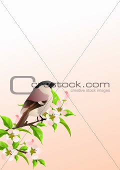 Background with sparrow