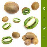 set of kiwi