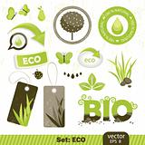vector set: ECO, BIO