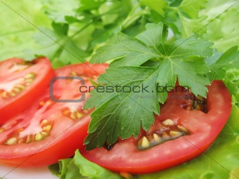 tomatoes, parsley and lettuce