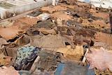 Skin in a berber tannery in Africa