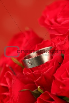 Titanium engagement ring in red rose