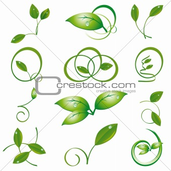 A set of green leaves