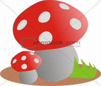 Fly agaric