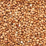 buckwheat