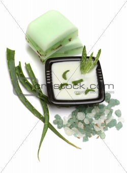 Aloe vera leaves, handmade soap, moisturizer and bath salt