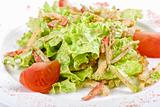 Salad of squid with roast chiken