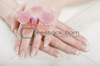 beautiful hands with french manicure