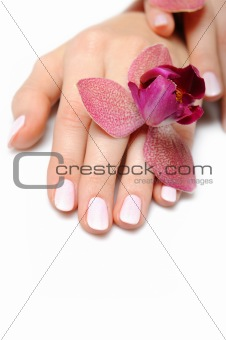 Beautiful hand with perfect nail pink manicure and purple orchid