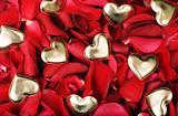 hearts and petals