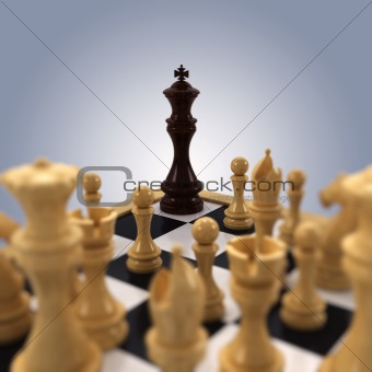 Chess king Cornered