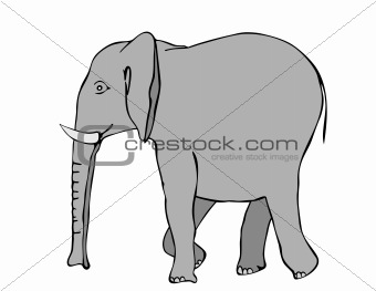 walking elephant - vector