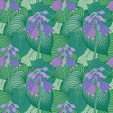 Flowering Hosta Pattern