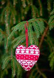 knitting heart on fir-tree branch