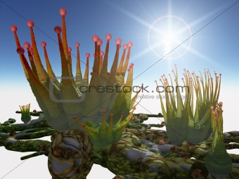 Alien Plants Pikaka