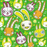 Rabbits bunny