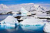 Icebergs in Antarctica