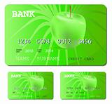 credit or debit green card