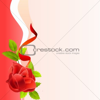 Frame with red rose