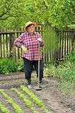 Senior woman gardening - hoeing vegetable bed