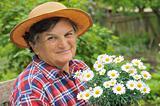 Senior woman gardening - holding Daisy