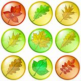 Leaves buttons, set