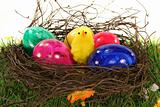 Easter basket with Easter eggs and chicks