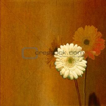 old floral paper scratched background