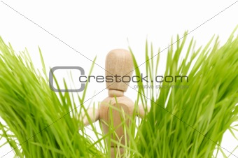A wooden mannequin on green grass