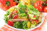 Mixed salad with strips of turkey