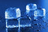 ice cube macro