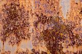 Rust door