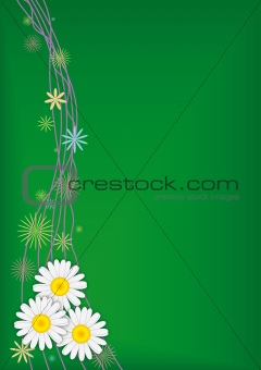 Three daisies on green vector background