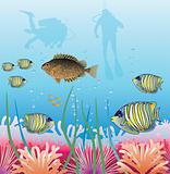 tropical fishes and scuba divers