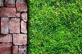 Stone pavement and grass field