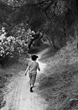 Boy Walking On Path