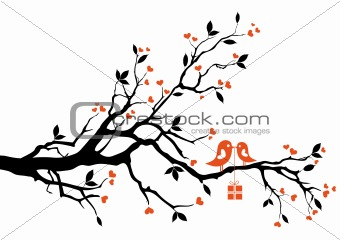 love bird with gift box, vector