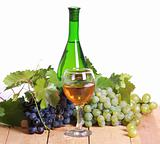 White wine and grapes composition