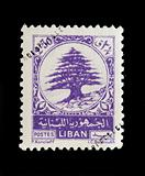 LEBANON - CIRCA 1948 - Postage stamp with cedar tree of Lebanon