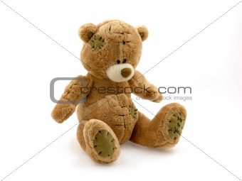 Toy brown bear
