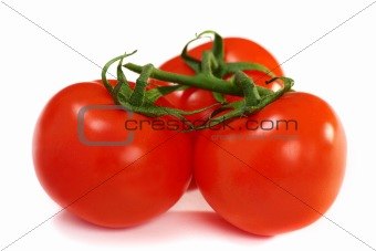 Three ripe tomatoes on a white background.