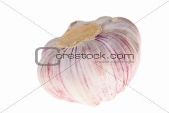 One Garlic