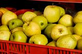 red box with fresh green apples
