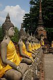 Aligned statues of Buddha ayutthaya thailand