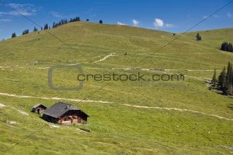 Austrian Pasture