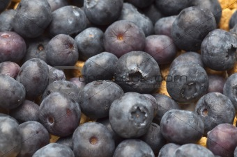 Close Up of Bowl of Cereal with Blueberries