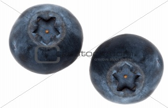 Pair of Fresh Blueberries