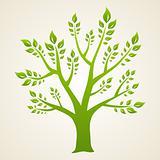 Green tree. Concept