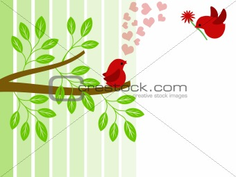 Pair of Love Birds for Valentines Day